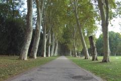 066_Unglaublich wie groß der Schlosspark ist