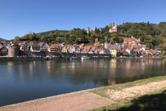 124_Stadtbild mit Burg von Hirschhorn