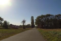 133_Von Heidelberg in Richtung Schwetzingen