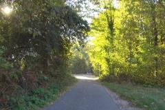 138_Am Ende von Schwetzingen ging es schon wieder auf schönen Waldwegen weiter