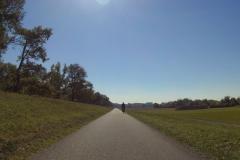 149_Und weiter geht es durch die Rheinauen Richtung Wörth