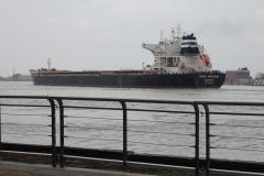 0192 - Dazwischen große Frachtschiffe