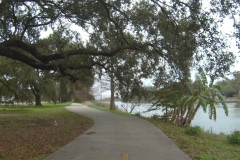 0229 - Auch das gibt es in New Orleans - beste Radwege