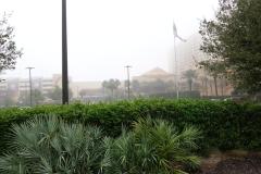 0242 - In Biloxi gibt es viele große Casinos - hier das Golden Nugget