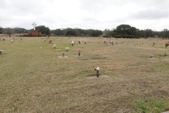 0253 - Ein Friedhof mit gewaltigen Ausmaßen