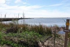 0282 - Mobile-Bay mit Interstate im Hintergrund
