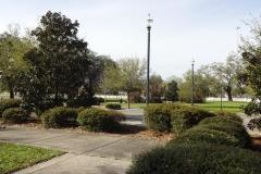 0311 - Rast in einem sehr seltenen Park am Straßenrand