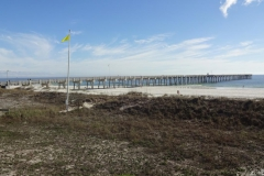 0351 - Seebrücke bei Laguna Beach