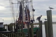 0361 - Das Boot lag gerade, ich habe schief fotografiert