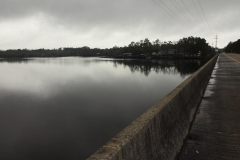 0367 - Am Ochlockonee River