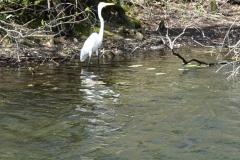 0393 - Wakulla Springs State Park