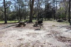 0397 - Im Wakulla Springs State Park