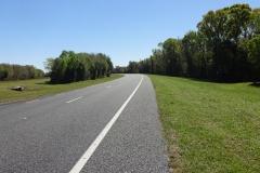 0420 - Nach sage und schreibe 45 Kilometer Gerade die erste Kurve