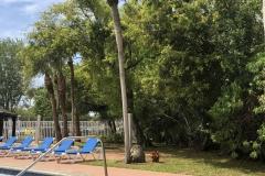 0444 - Egal wie die Ausstattung ist, ein Pool hat jedes Motel