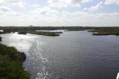 0461 - Der Manatee-River