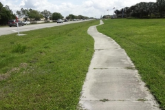 0475 - Ziemlich krumm gewachsen, der Fuß- und Radweg