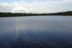 0506 - Der Lake Placid von Everglades City
