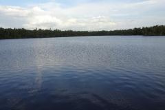 0506 - Der Lake Placid von Everglades City