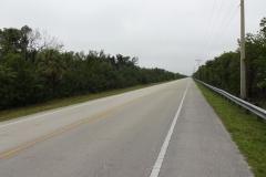 0508 - Frühmorgens war es noch trüb und ruhig auf dem Weg zum Tamiami Trail