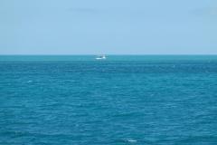 0563 - Karibik-Feeling