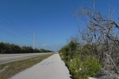 0578 - Der Radweg war teilweise in sehr schlechtem Zustand - vermutlich durch ständige Überschwemmungen