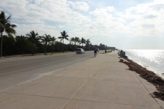 0609 - Dazu ein schöner breiter Geh- und Radweg