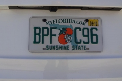 0610 - Kennzeichen meines Mietwagens