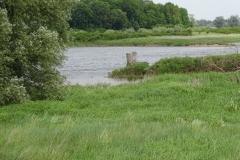 Sehr unscheinbar, der Zusammenfluss von der Neiße in die Oder