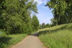 043 - Ausfahrt aus Bad Saeckingen
