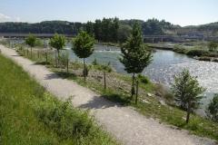 050 - Der Rhein beim Kraftwerk Rheinfelden