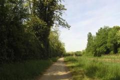 070 - Entlang des Canal du Rhône au Rhin