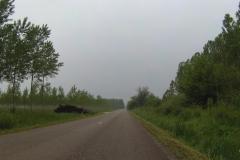 123 - Dass kein Verkehr war wies darauf hin, dass es kein Durchkommen gibt