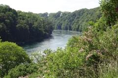 029 - Vorbei der ganze Trubel, nun fließt der Rhein wieder ruhig dahin