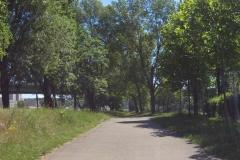245 - Radweg im Grünen