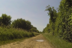 180A - Der Radweg entlang der Saône - so nicht schnell genug befahrbar