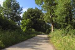 264 - Wieder auf dem Radweg entlang der Rhône