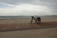 379 - Fahrrad als Portrait