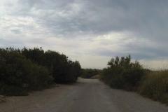 385 - Dann mal wieder ein Stück Naturweg