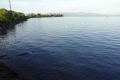 Wir wohnen schon schön am Bodensee - bin immer wieder beeindruckt