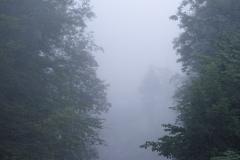 Früh am Morgen herrschte noch Nebel