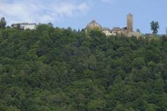 ... das hier ist viel schöner - und wäre von der anderen Seite des Donauradwegs nicht zu sehen gewesen