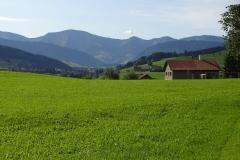 Blick zurück nach Oberstaufen
