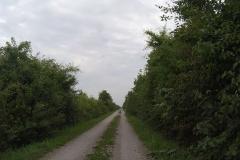 Dann war der Radweg sehr eintönig. So ging es über viele Kilometer.
