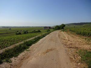 La Route des grands crus de Bourgogne